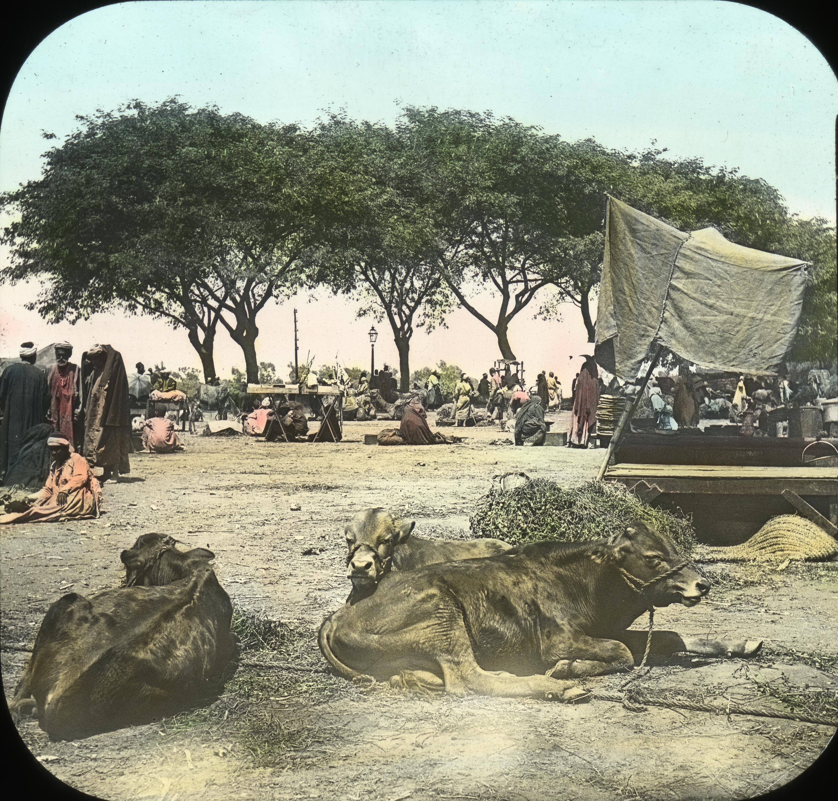 Egypt - Market at Kasr-en-Nil