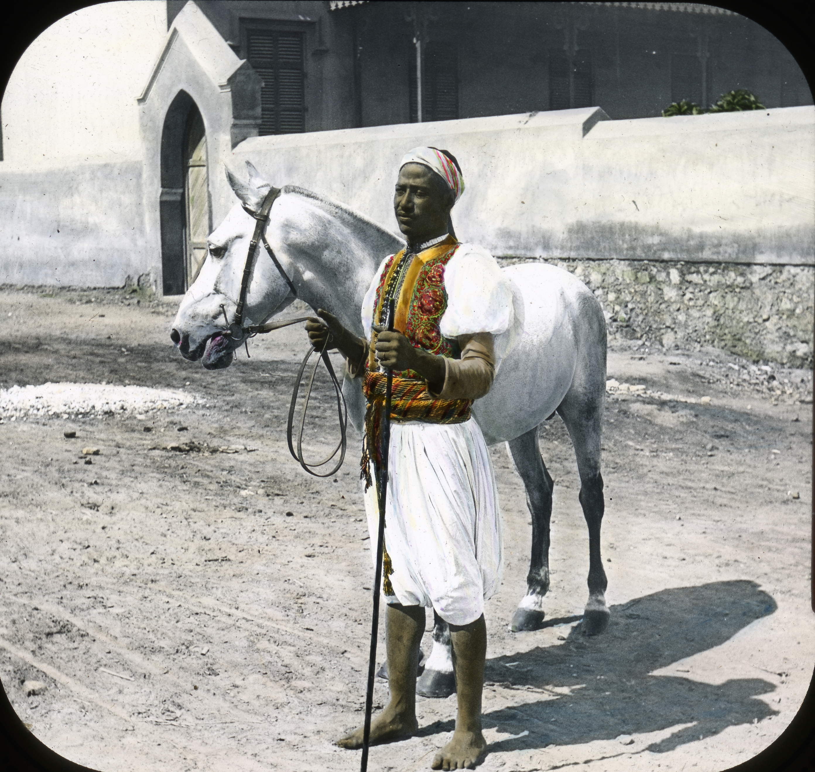 072 - Egypt - Arabian Horse and Sais, Cairo